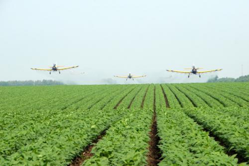 我国力争到2020年一半以上的农业示范区实现现代化
