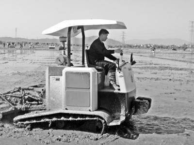 全国春耕生产农机化技术培训班提出--加快推广先进适用的农机化技术