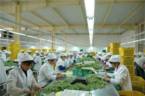 """黑龙江海林做好""""三篇大文章""""行成优势产业集群"""