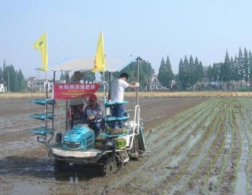 镇江丹阳市坚定不移推进水稻机插秧工作