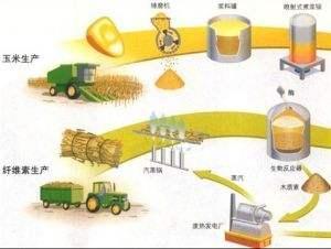 2.1吨玉米秸秆可生成1吨初级生物液体燃料