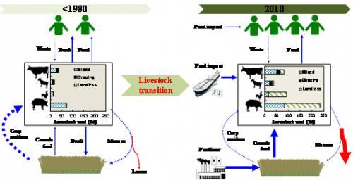 中国畜牧业转型的驱动机制和资源环境代价研究获进展