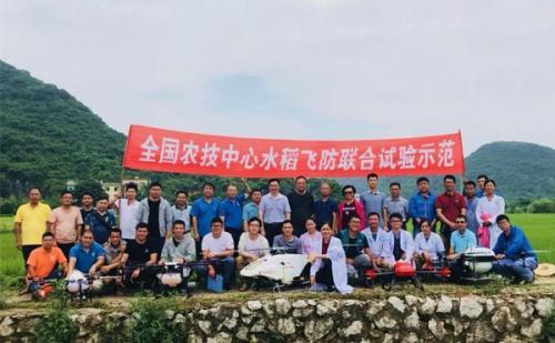 植保无人机喷洒飞防药剂及助剂防治水稻病虫害联合示范试验在广西兴安开展
