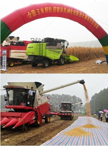 玉米籽粒低破碎机械化收获技术集成示范活动举办
