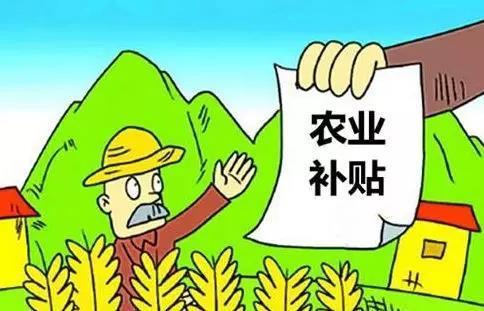 """农业补贴当""""紧箍"""" 群众意见大"""