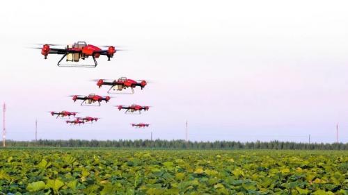 解放劳动力 新疆农业生产科技感十足