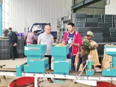 安徽潜山工厂化育秧助增收