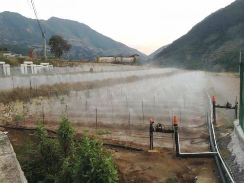 凉山州会理县奶油果种苗繁育基地智能水肥一体化灌溉系统项目成功交付