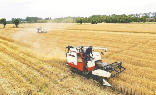 麦收在即 安徽计划投入19万台联合收割机