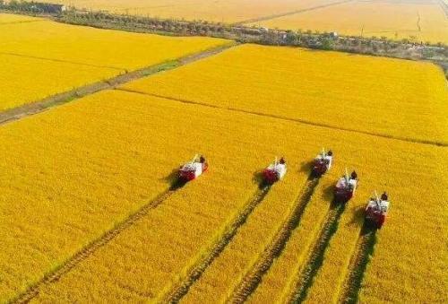 江苏省农业机械化有关情况的调研报告