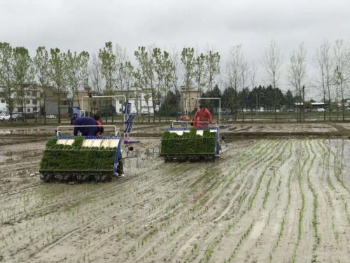 福建農機化發展加速器來了!