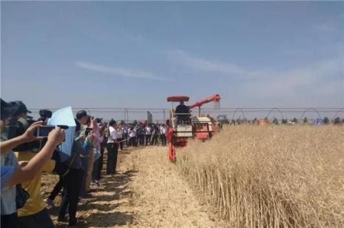 對中國農機推廣田間日精髓的幾點思考