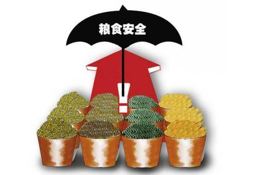 国家粮食安全述评:三大谷物自给率超过98%