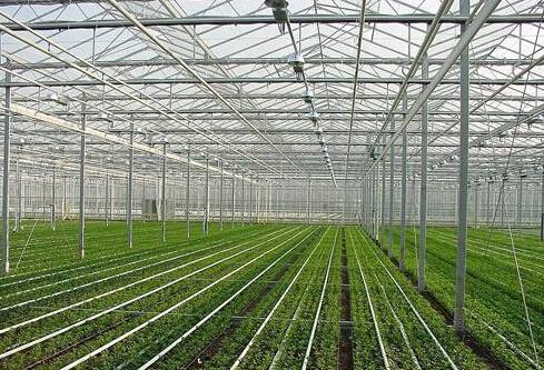 智能温室控制柜,温室大棚整体解决方案