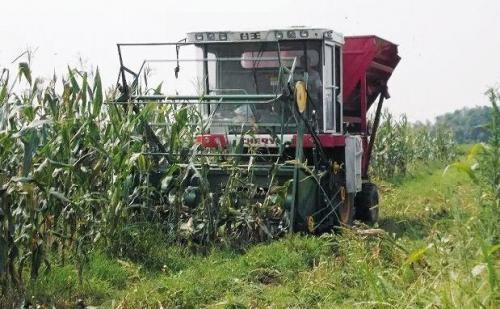 联合收割机脱粒玉米时注意哪些问题?