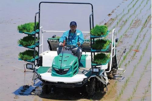 福建水稻插秧机质量调查出炉