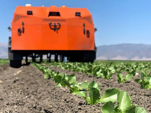 美国的农业机器人公司频繁拿下投资背后是农业的狂欢