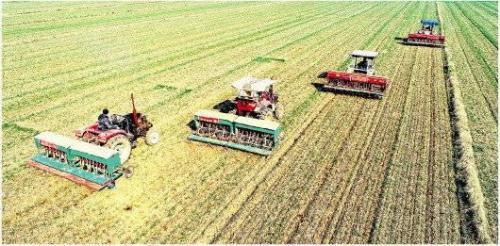无人机助阵 自动化播种育苗