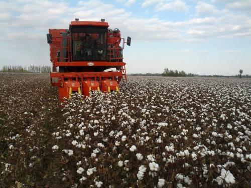 采棉机:棉花种植的重器