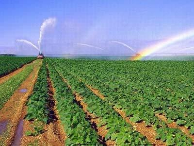 园林发展当前应该用的节水灌溉技术