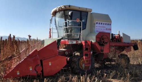 甘农大研发的藜麦联合收割机亮相武威