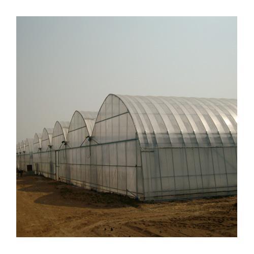 薄膜连栋温室,连栋温室