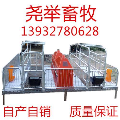 母猪双体产床保育床定位栏