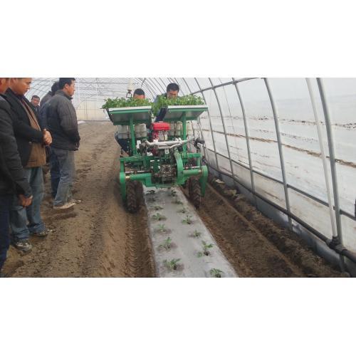 蔬菜移栽机、秧苗移栽机、花卉树苗栽植机