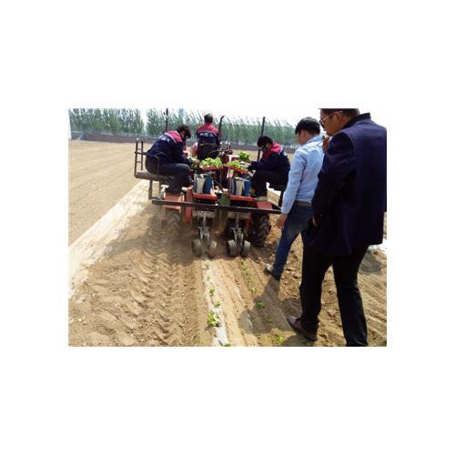 移栽机/拖拉机带动乘坐式移栽机/操作简单/效率高/田耐尔