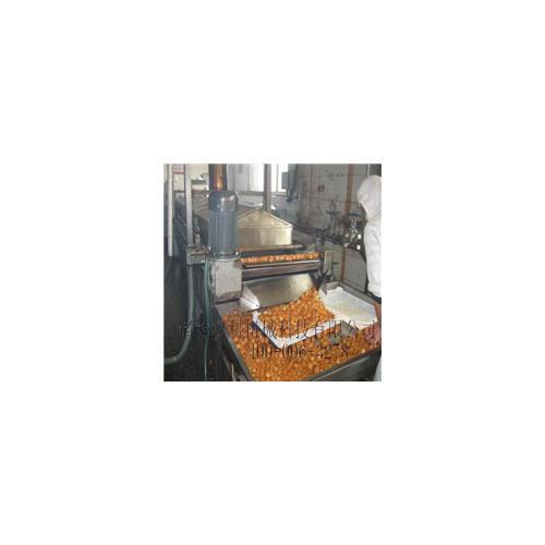 3500型蔬菜饼全自动电加热油炸生产线