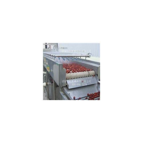 果蔬加工7000型全自动气泡清洗机