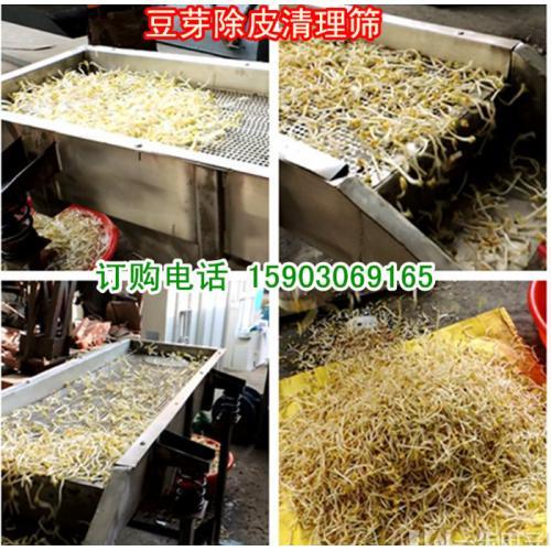 家用豆芽去皮机/长方形豆芽去皮清理筛/不锈钢豆芽去皮机