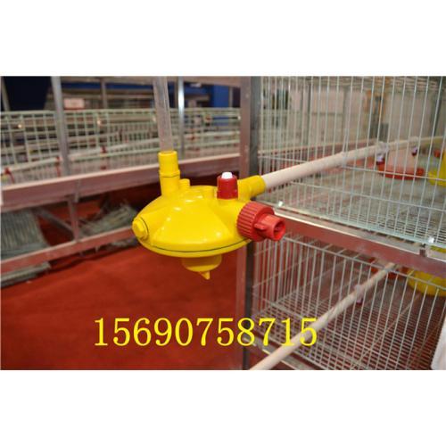 镀锌鸡笼厂子清粪机层叠蛋鸡笼阶梯笼具饮水器