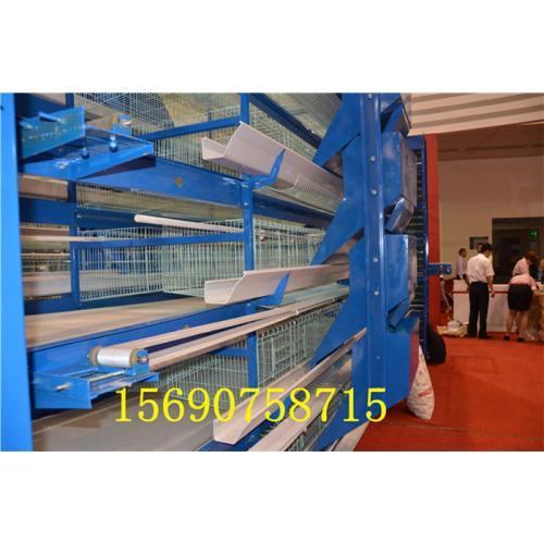 鸡笼,商品蛋鸡笼,公鸡笼,肉鸡笼,种蛋鸡笼