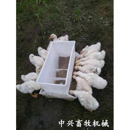 山东中兴畜牧肉鸭料槽 种鸭料桶料箱 鹅料箱