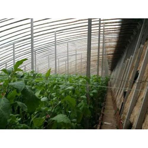 日光温室大棚,日光蔬菜大棚,日光花卉大棚