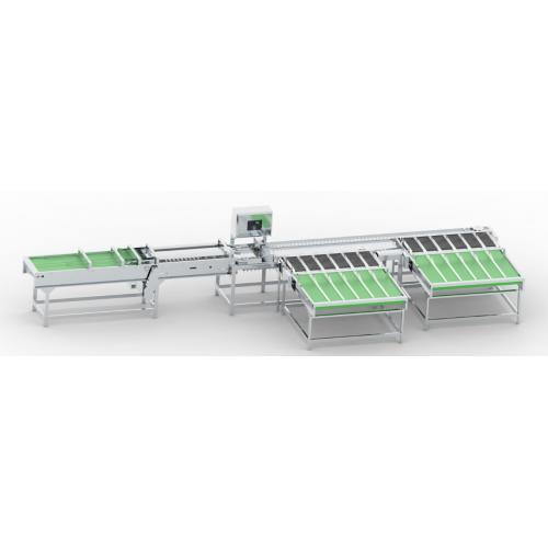 双排电子分级设备