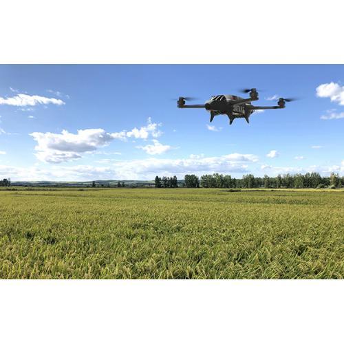 无人机遥感技术水稻施肥管理